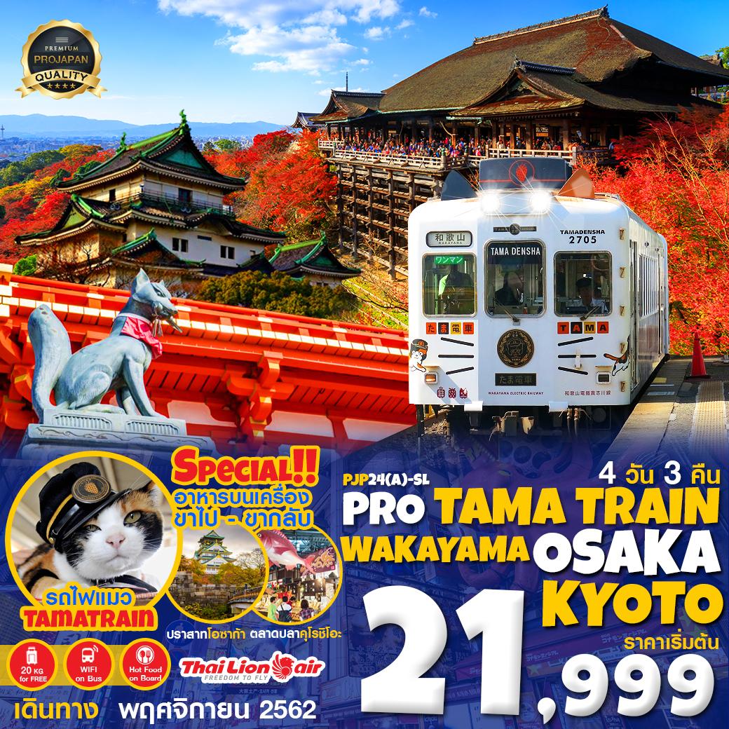 PRO รถไฟแมว WAKAYAMA OSAKA KYOTO 4D3N