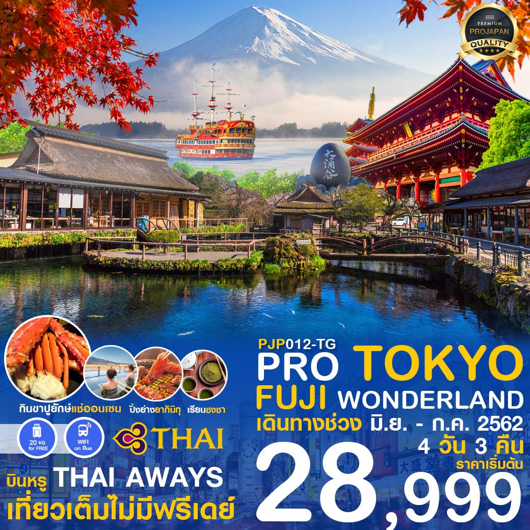 PRO TOKYO-FUJI WONDERLAND 4D3N เดินทาง มิ.ย.-ก.ค.62
