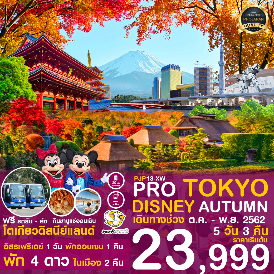 PRO TOKYO DISNEY AUTUMN 5D 3N เดินทาง ต.ค-พ.ย.2562